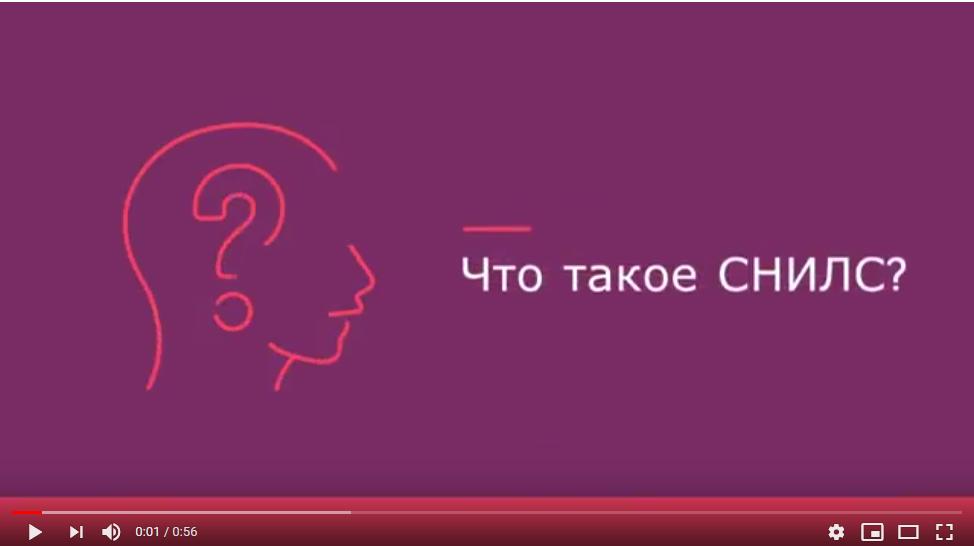 СНИЛС видео